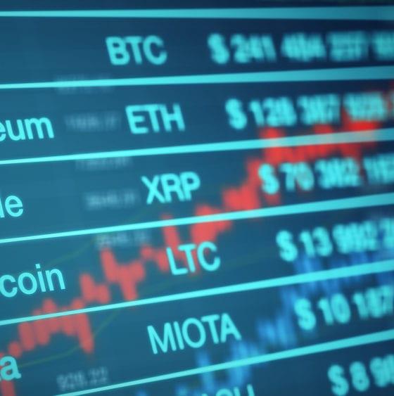 Cryptocurrency Exchange Josh Coooper